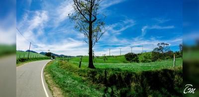 Things To Do Around Nuwara Eliya Sri Lanka